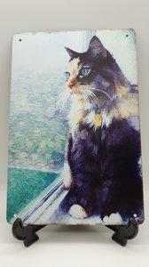 Metalen bord Kat voor het raam