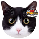 PetFaces kussen Tuxedo (HTK)_9