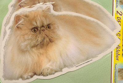 Grote kattensticker 04 op=op