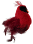 Pet-Sport-Feathered-Kitty-Wobbler-Red