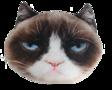 PetFaces-kussen-Grumpy-Cat
