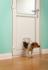 Staywell Kattenluik Big Cat - Small Dog 280 ML_9